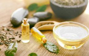 Olejek z drzewa herbacianego właściwości i zastosowanie